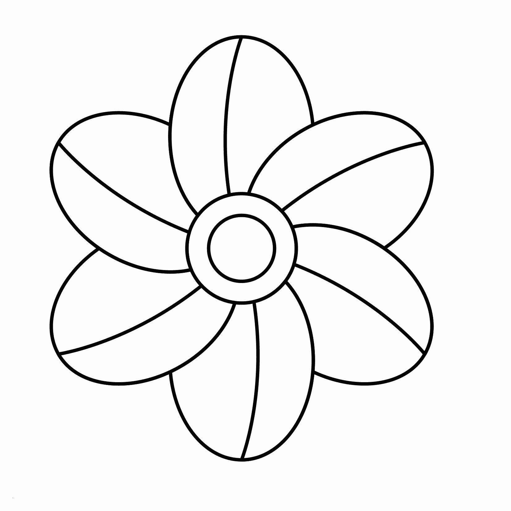 Blumenranken Zum Ausdrucken Inspirierend 46 Genial Fotografie Von Window Color Vorlagen Zum Ausdrucken Bild