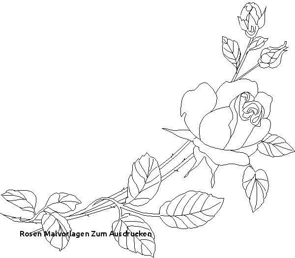 Blumenranken Zum Ausdrucken Inspirierend Rosen Malvorlagen Zum Ausdrucken Blumenmuster Malen Kostenlose Bilder