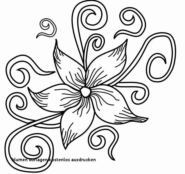 Blumenranken Zum Ausdrucken Neu 22 Blumen Vorlagen Kostenlos Ausdrucken Colorbooks Colorbooks Fotografieren