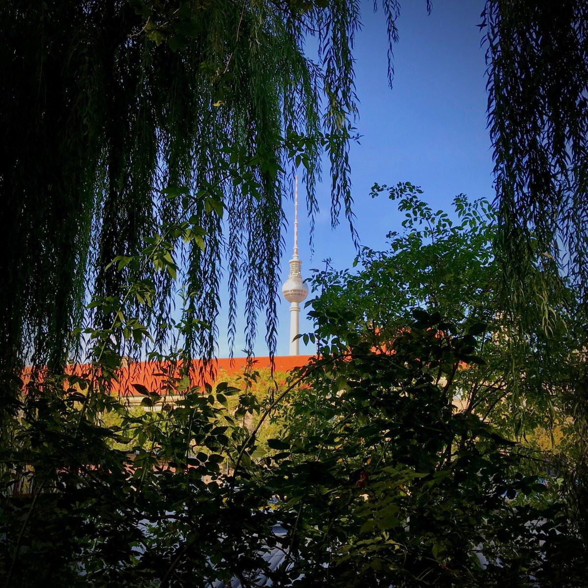 Chamäleon Bilder Zum Ausmalen Das Beste Von Wowplaces Travelblog Wowplacesde Fotografieren