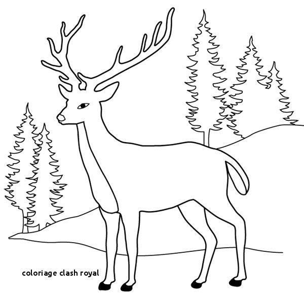 Clash Royal Ausmalbilder Inspirierend Coloriage Clash Royal Coloriage Enveloppe Unique 43 Best Bild
