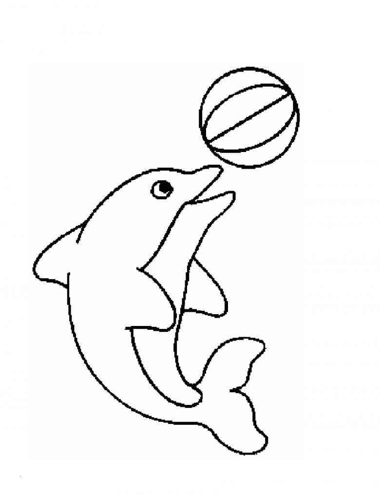 Delfin Bilder Zum Ausdrucken Einzigartig 47 Elegant Delfin Ausmalbilder Zum Ausdrucken Beste Malvorlage Bild