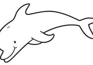 Delfin Bilder Zum Ausdrucken Einzigartig Delphin Malvorlage Einfach Awesome Delfin Mandala Vorlagen Delphin Stock
