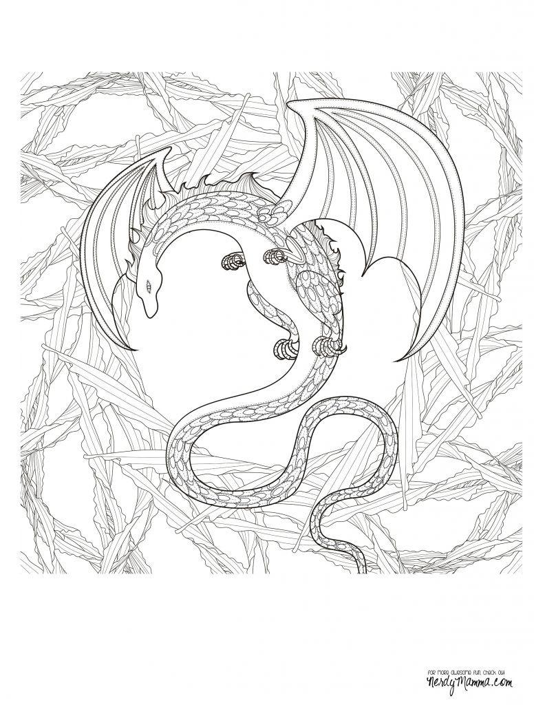Delfin Bilder Zum Ausdrucken Einzigartig Malvorlagen Für Erwachsene Kostenlose Druckvorlagen Schön Delfin Bilder