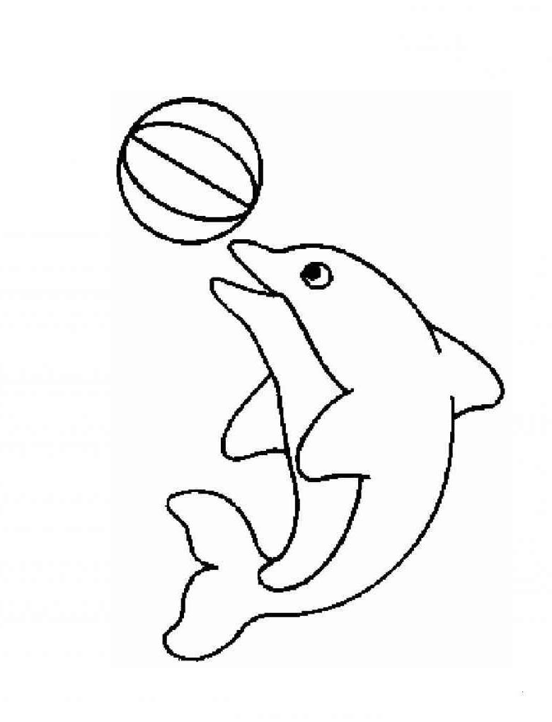 Delphin Zum Ausmalen Inspirierend Ausmalbilder Delfine Zum