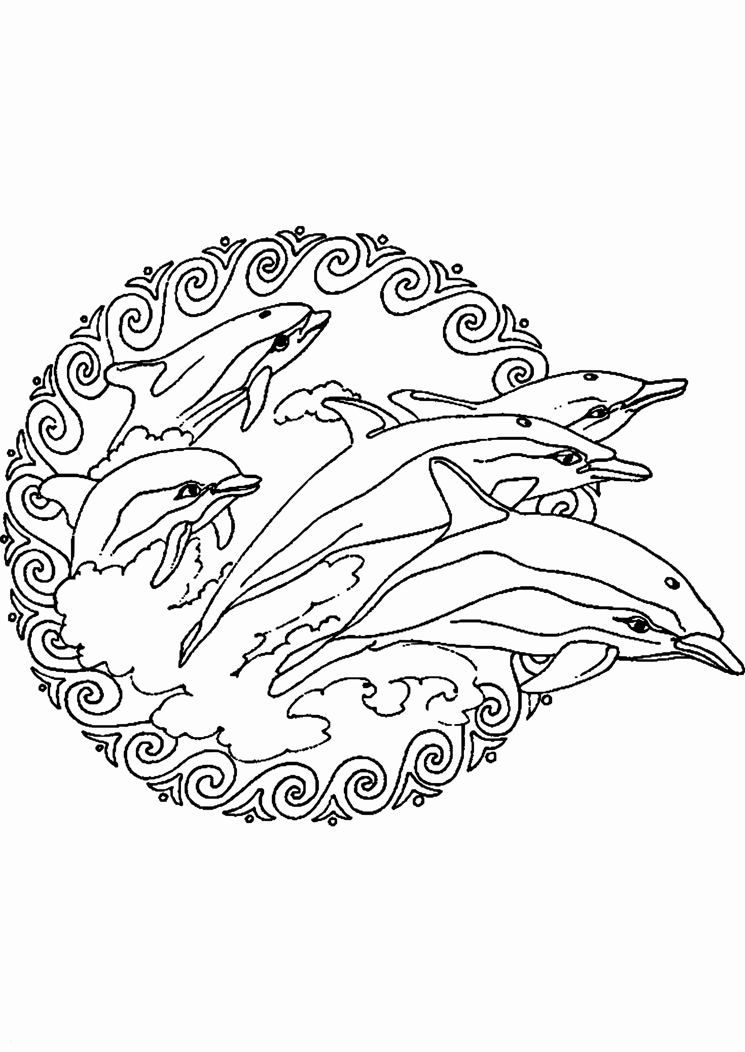 Delphin Zum Ausmalen Neu Ausmalbilder Delfine Zum Ausdrucken Sammlungen Malvorlagen Delphin Sammlung