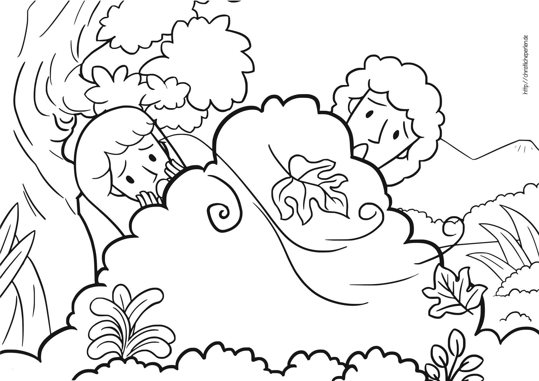Der Kleine Maulwurf Ausmalbilder Frisch Ausmalbilder Kleiner Maulwurf Genial Adam Und Eva Ausmalbilder Galerie