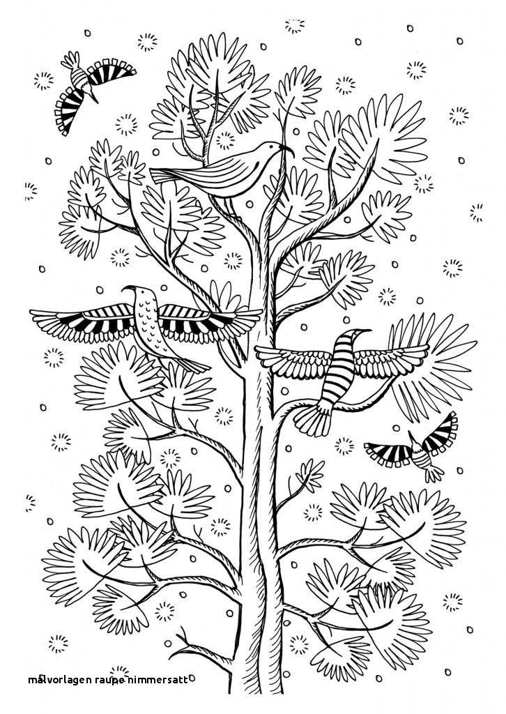Die Kleine Raupe Nimmersatt Ausmalbild Genial Malvorlagen Raupe Nimmersatt Malvorlagen Für Kleine Kinder Bild