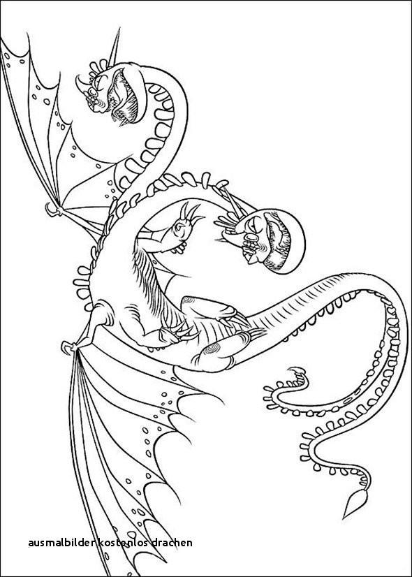Drachen Bilder Zum Ausdrucken Kostenlos Das Beste Von Ausmalbilder Kostenlos Drachen Malvorlage A Book Coloring Pages Best Stock