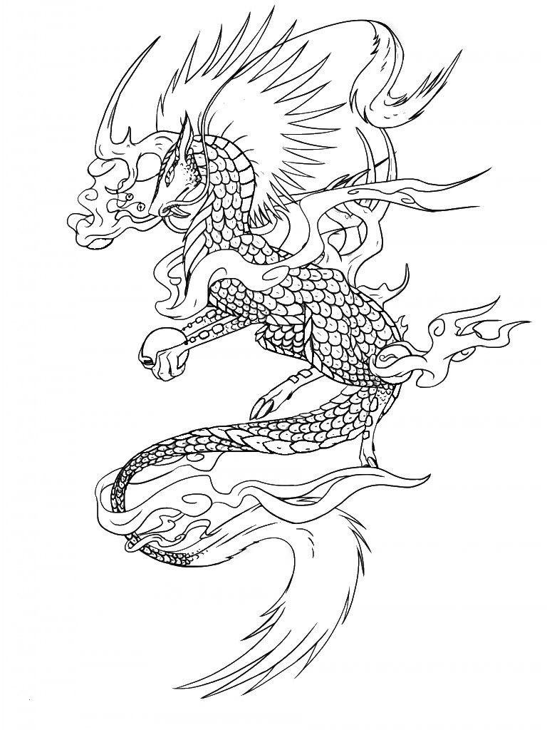 Drachen Bilder Zum Ausdrucken Kostenlos Frisch Ausmalen Erwachsene Fabeltiere Ausmalbilder Elegant Drachen Bilder