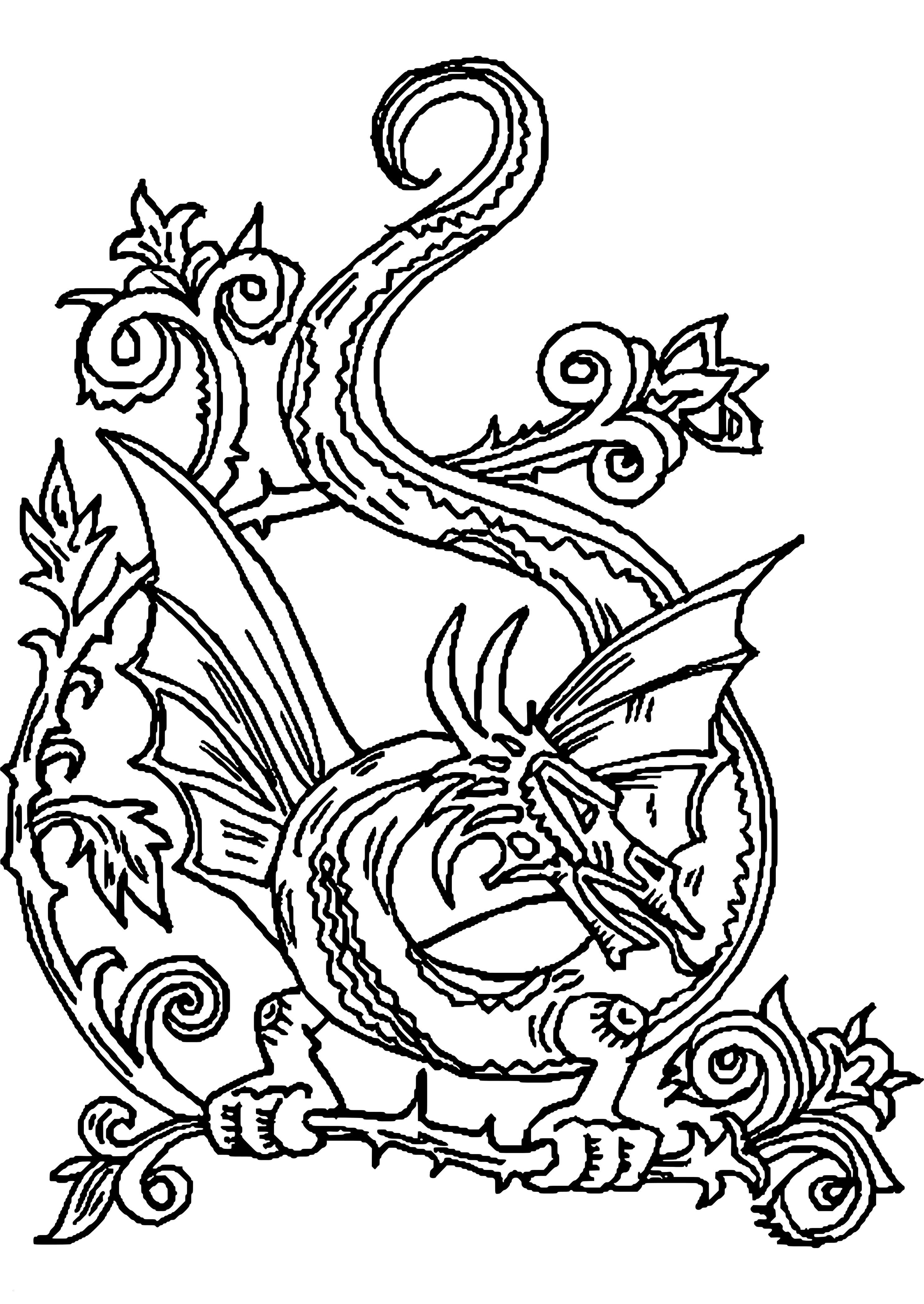 Drachen Bilder Zum Ausdrucken Kostenlos Inspirierend Drachen Malvorlagen Neu Ausmalbilder Drachen Kostenlos Malvorlagen Bilder