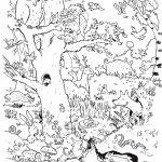 Dragons Auf Zu Neuen Ufern Ausmalbilder Das Beste Von Ausmalbilder Sam Uploadertalk Best Ausmalbilder Kostenlos Bild