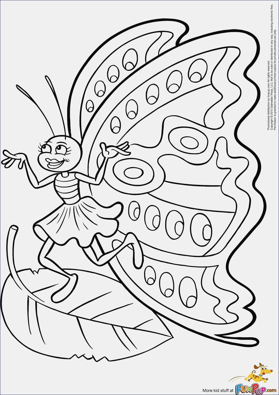 Dragons Auf Zu Neuen Ufern Ausmalbilder Genial 37 Ausmalbilder Dragons Auf Zu Neuen Ufern Scoredatscore Schön Das Bild