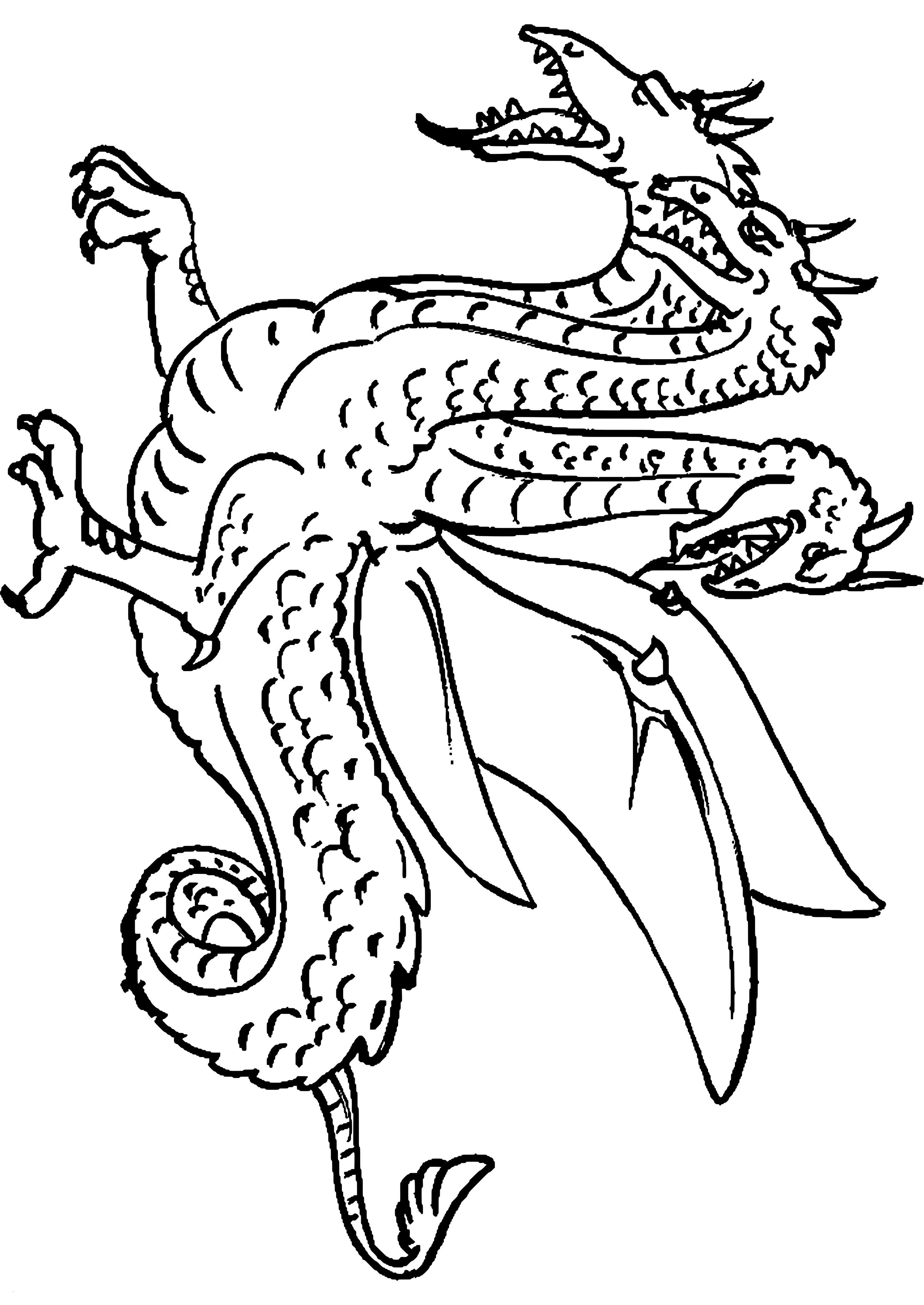 Dragons Auf Zu Neuen Ufern Ausmalbilder Neu 35 Dragons Ohnezahn Ausmalbilder Scoredatscore Best Malvorlagen Fotos