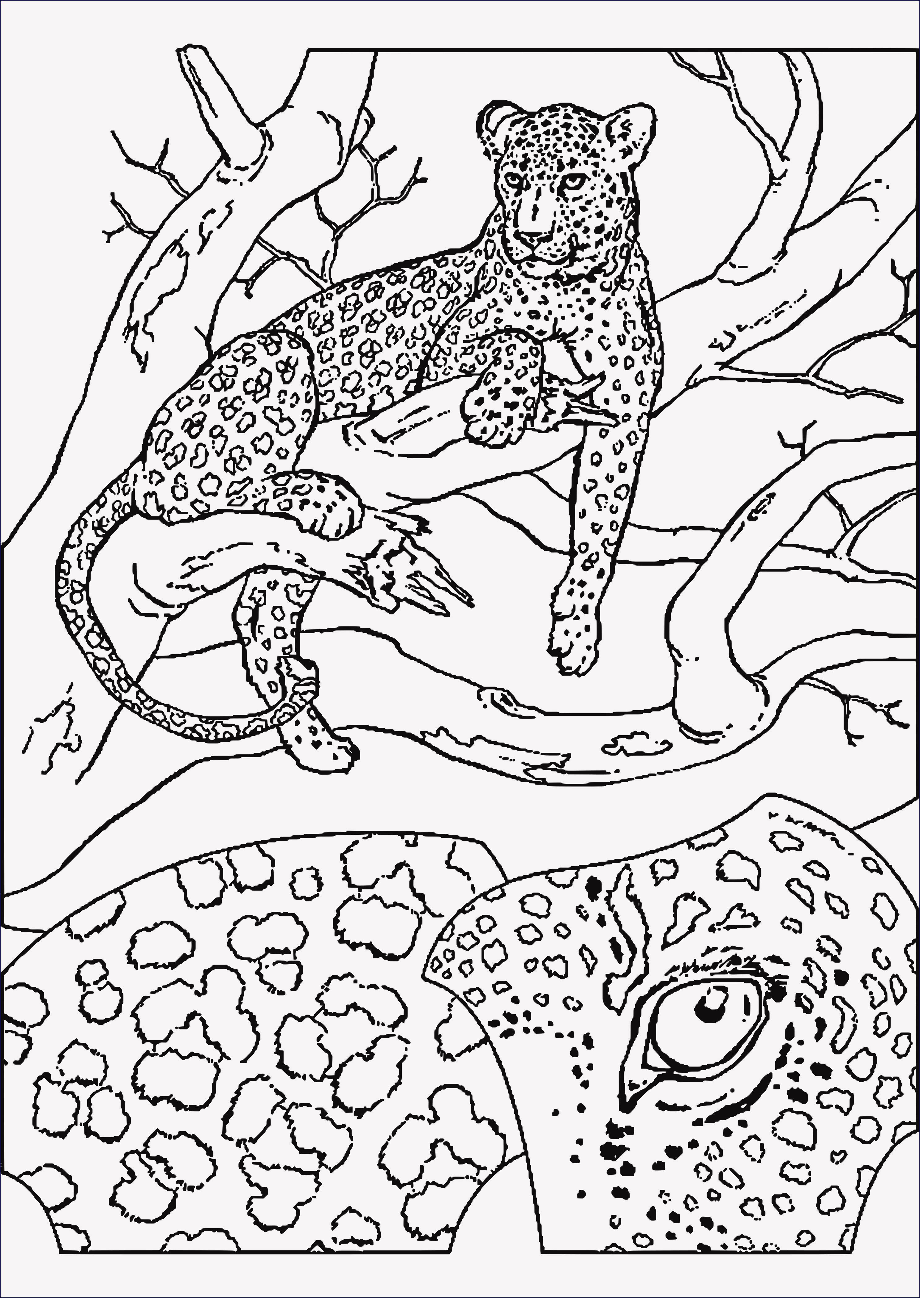 Dschungel Bilder Zum Ausdrucken Frisch 25 Gut Aussehend Malvorlagen Tiere Zum Ausdrucken Stock