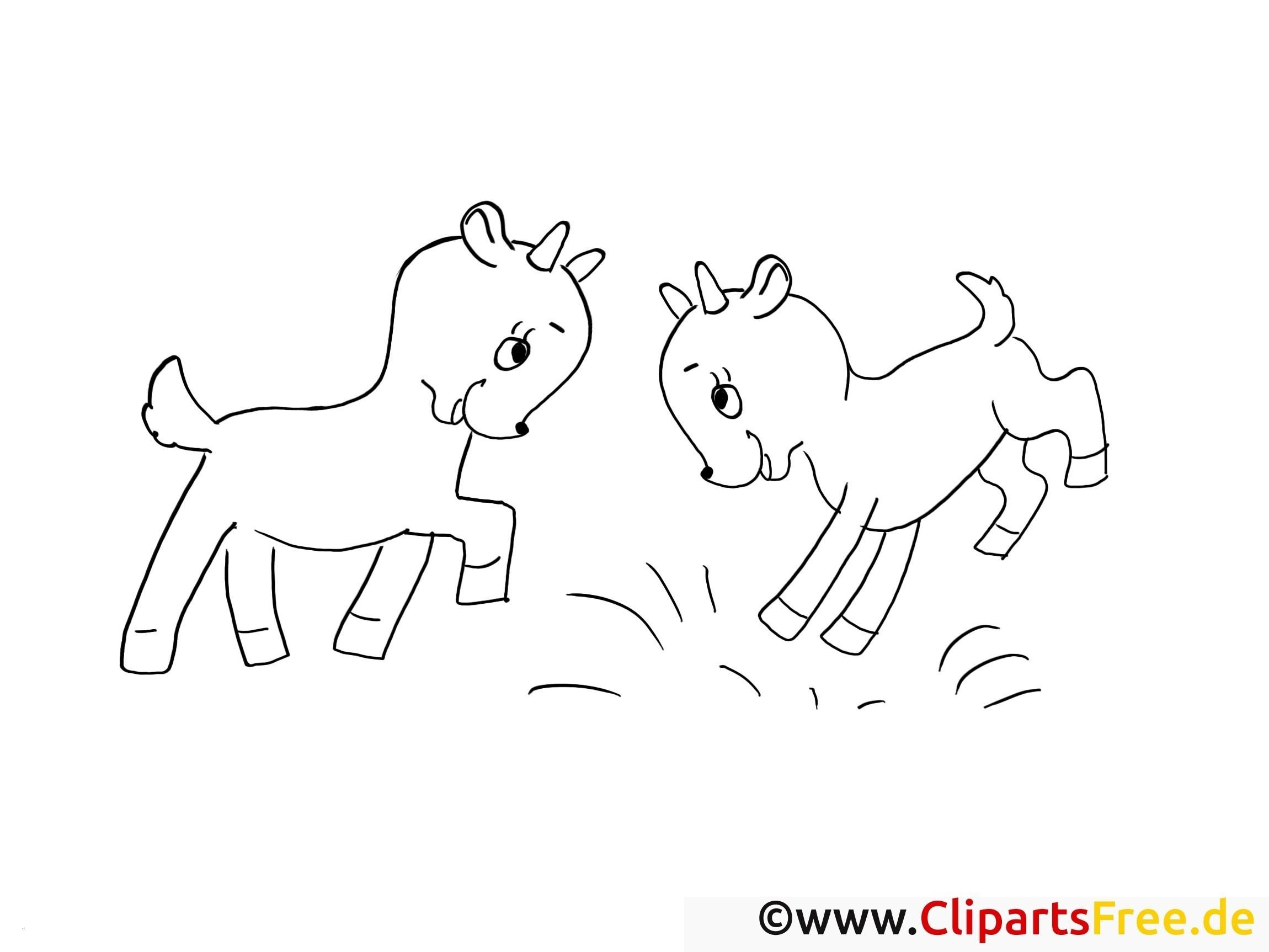 Einhorn Bilder Zum Ausmalen Frisch Einhorn Bilder Cartoon Faszinierend Fuchs Bilder Im Schnee Www Sammlung
