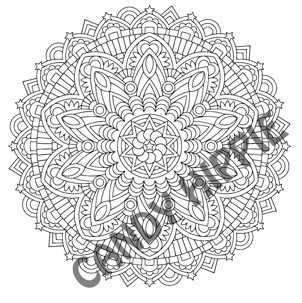 Einhorn Mandala Erwachsene Frisch Druckbare Malvorlage Malvorlagen Mandala Beste Druckbare Das Bild