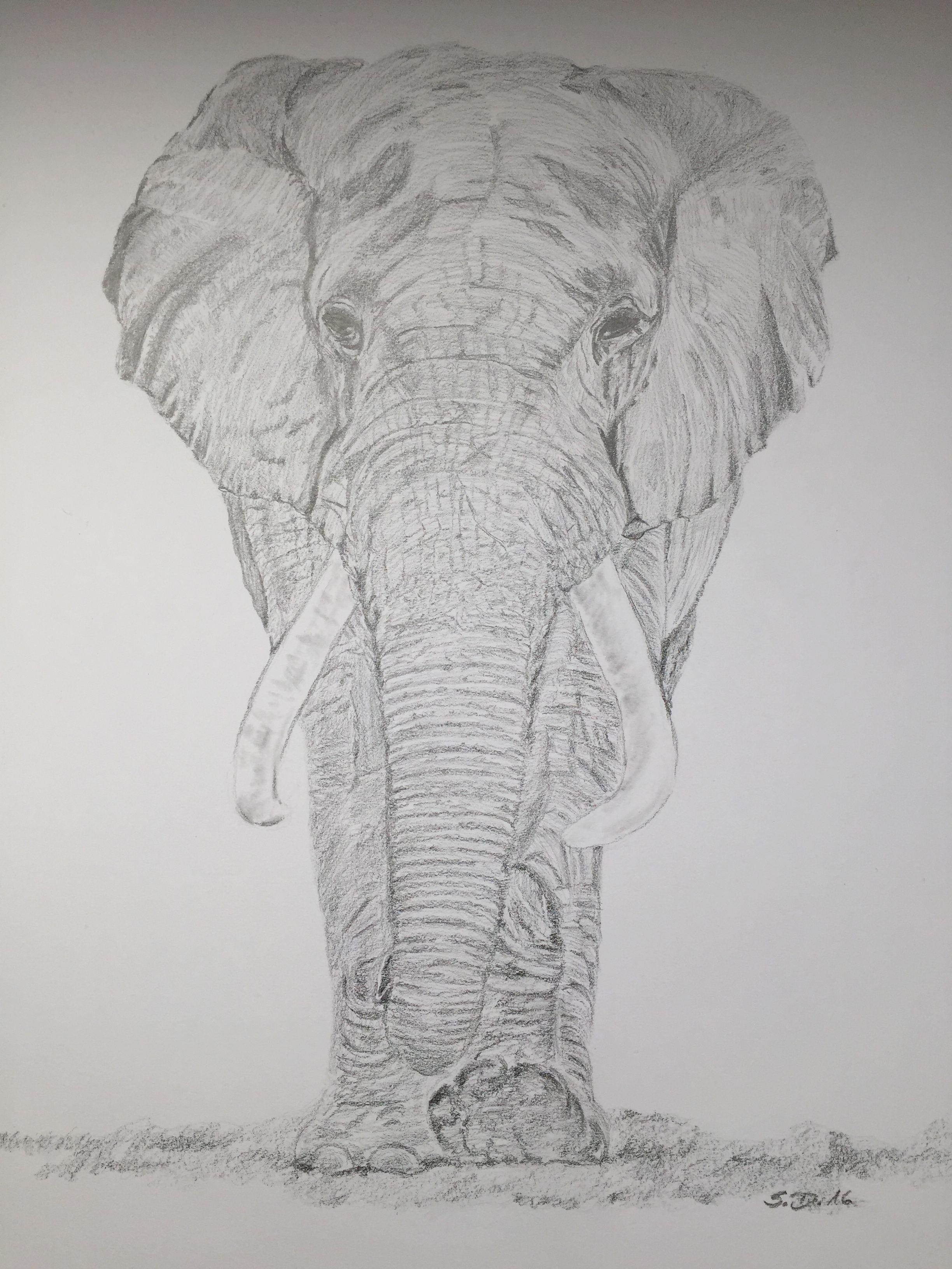 Elefant Zum Ausdrucken Das Beste Von Bayern Ausmalbilder Neu Igel Grundschule 0d Archives Uploadertalk Fotos