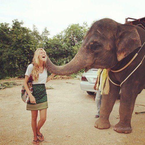 Elefant Zum Ausdrucken Das Beste Von Hang Out with An Elephant Reisen Pinterest Fotos