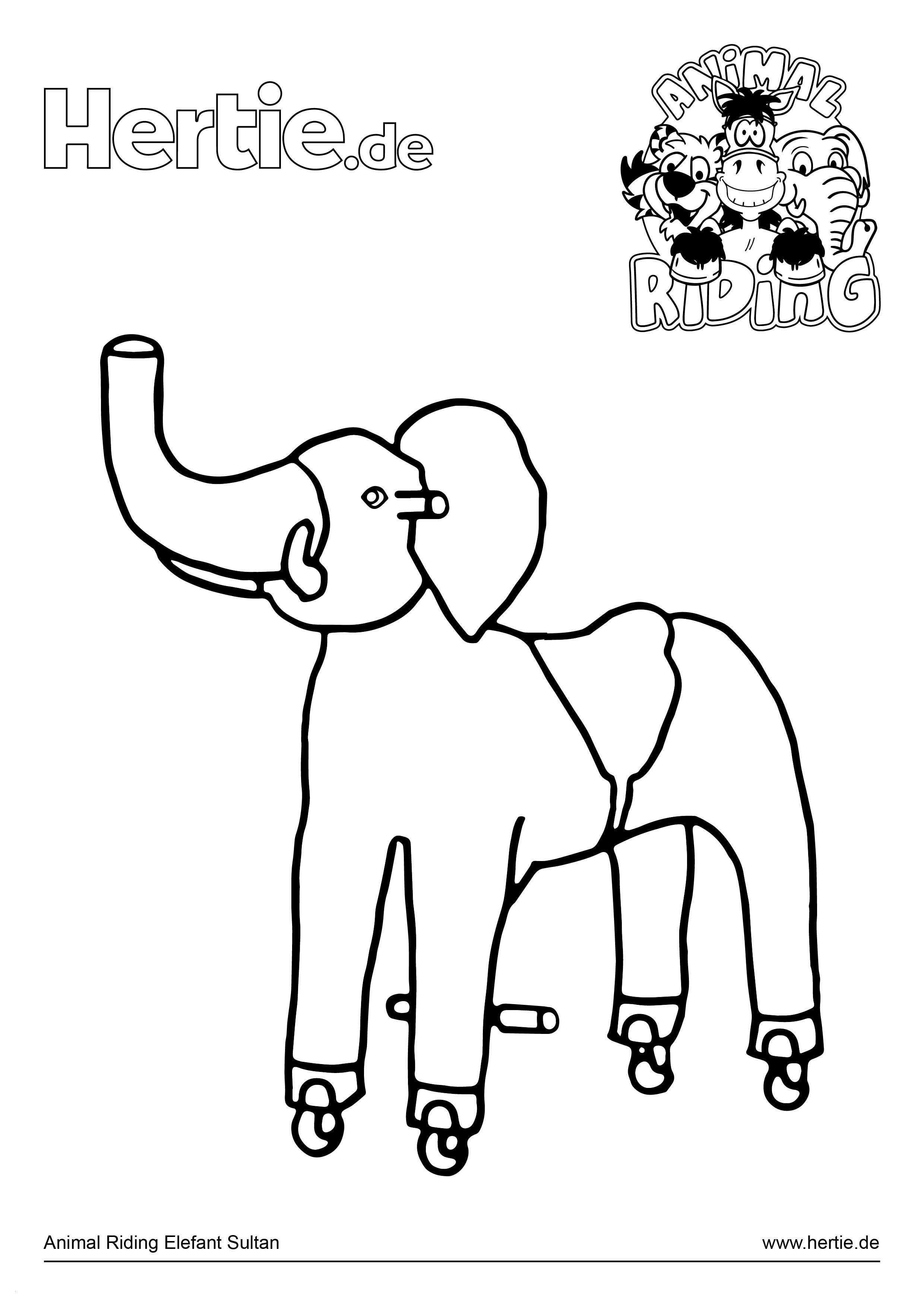 Elefant Zum Ausdrucken Einzigartig Elefanten Ausdrucke Genial 7 Best Animal Riding Ausmalbilder Das Bild