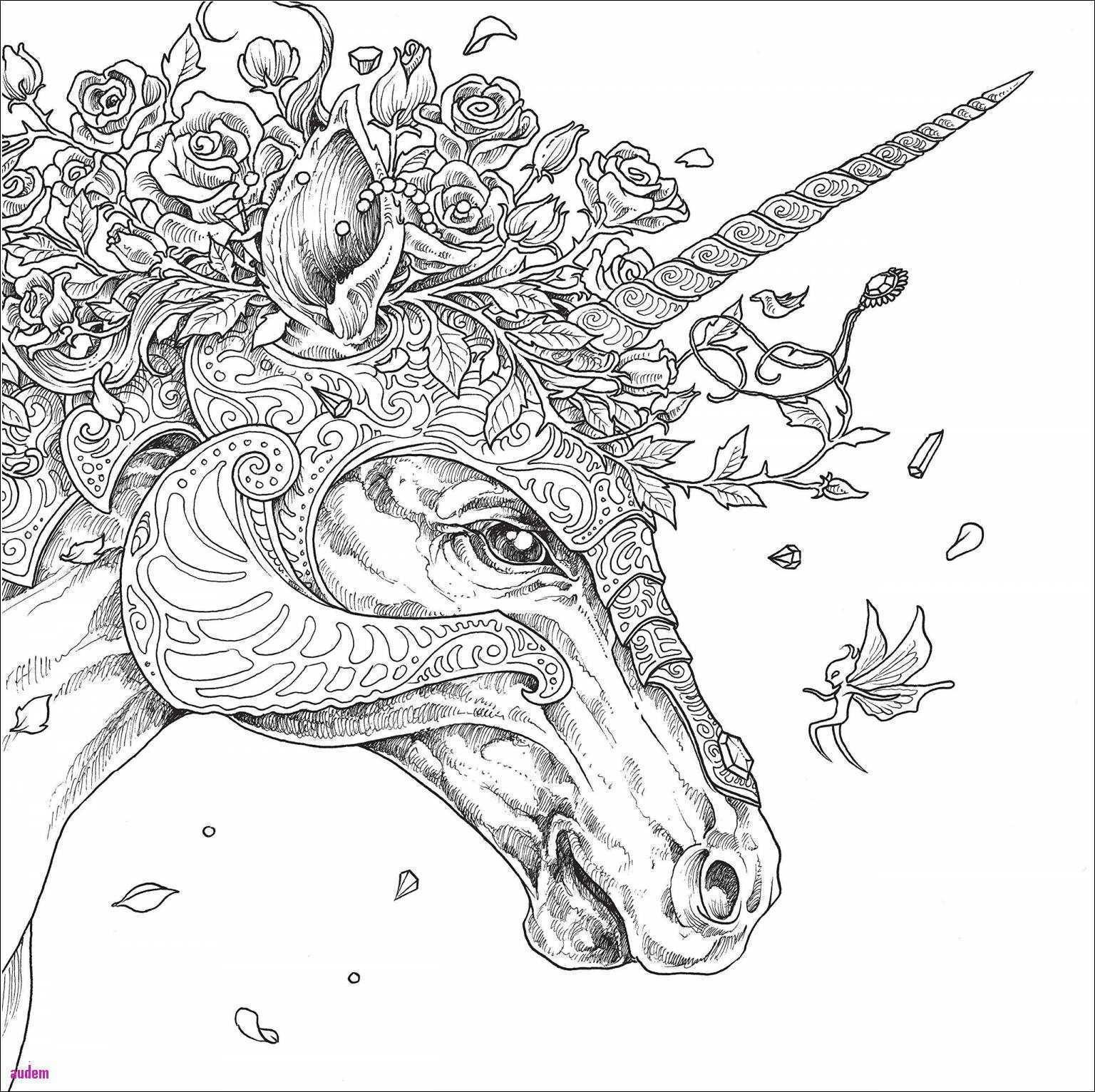 Elefant Zum Ausdrucken Frisch Elefant Zeichnen Einfach Bildnis Malvorlagen Igel Frisch Igel Sammlung