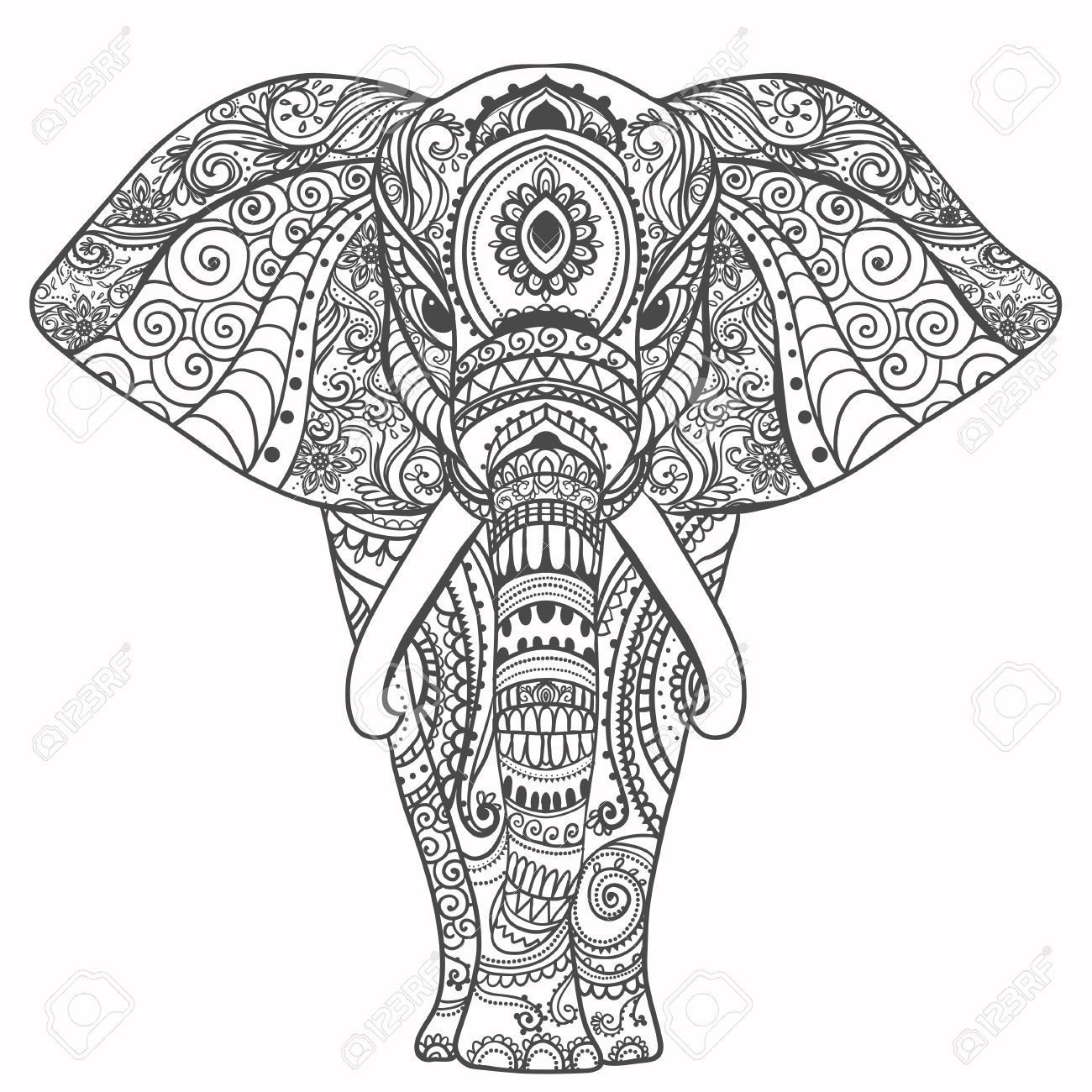 Elefant Zum Ausdrucken Genial Gruß Schöne Karte Mit Elefant Frame Animal Gemacht In Vektor Galerie