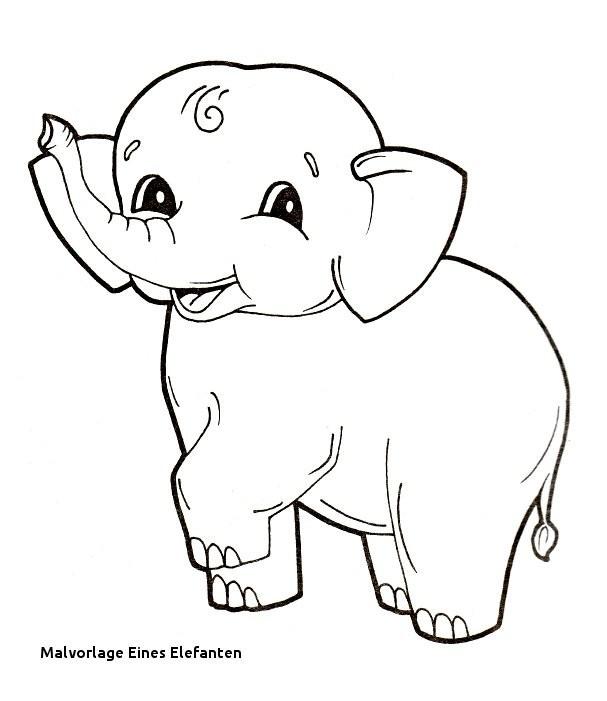 Elefant Zum Ausdrucken Inspirierend Druckbar Ausmalbild Elefant Fotografieren
