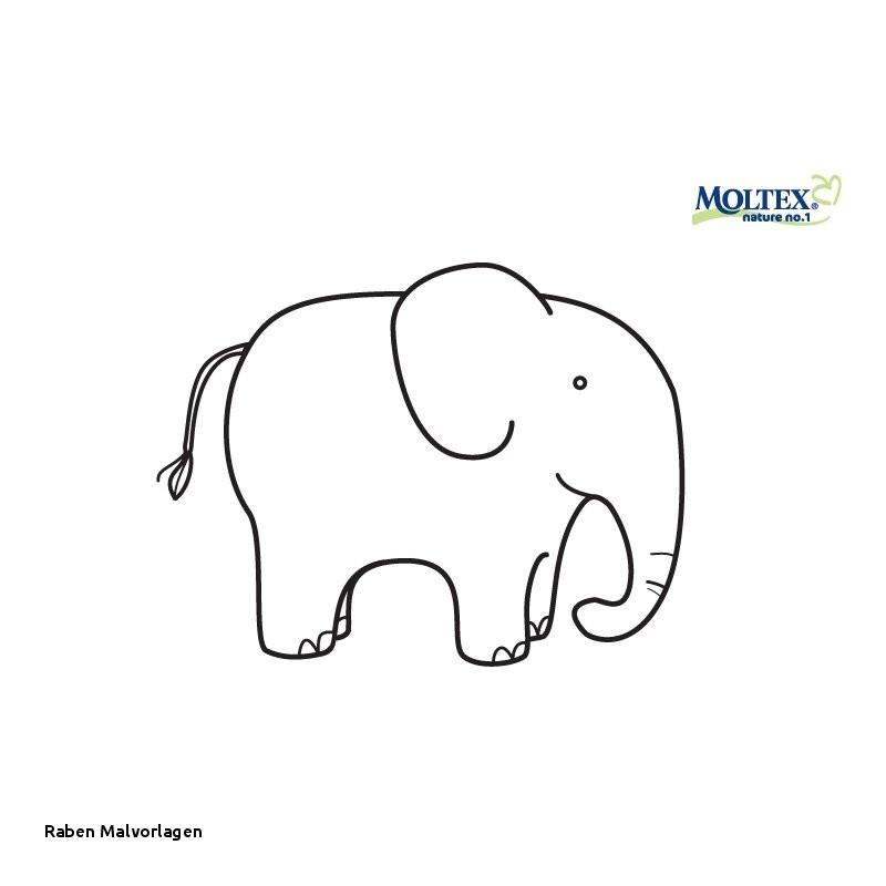 Elefant Zum Ausdrucken Inspirierend Raben Malvorlagen Malvorlagen 1001 Genial Malvorlagen Elefant Genial Galerie