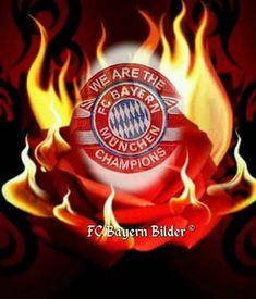Fc Bayern Hintergrundbilder Inspirierend Die 151 Besten Bilder Von Fc Bayern In 2018 Fotografieren