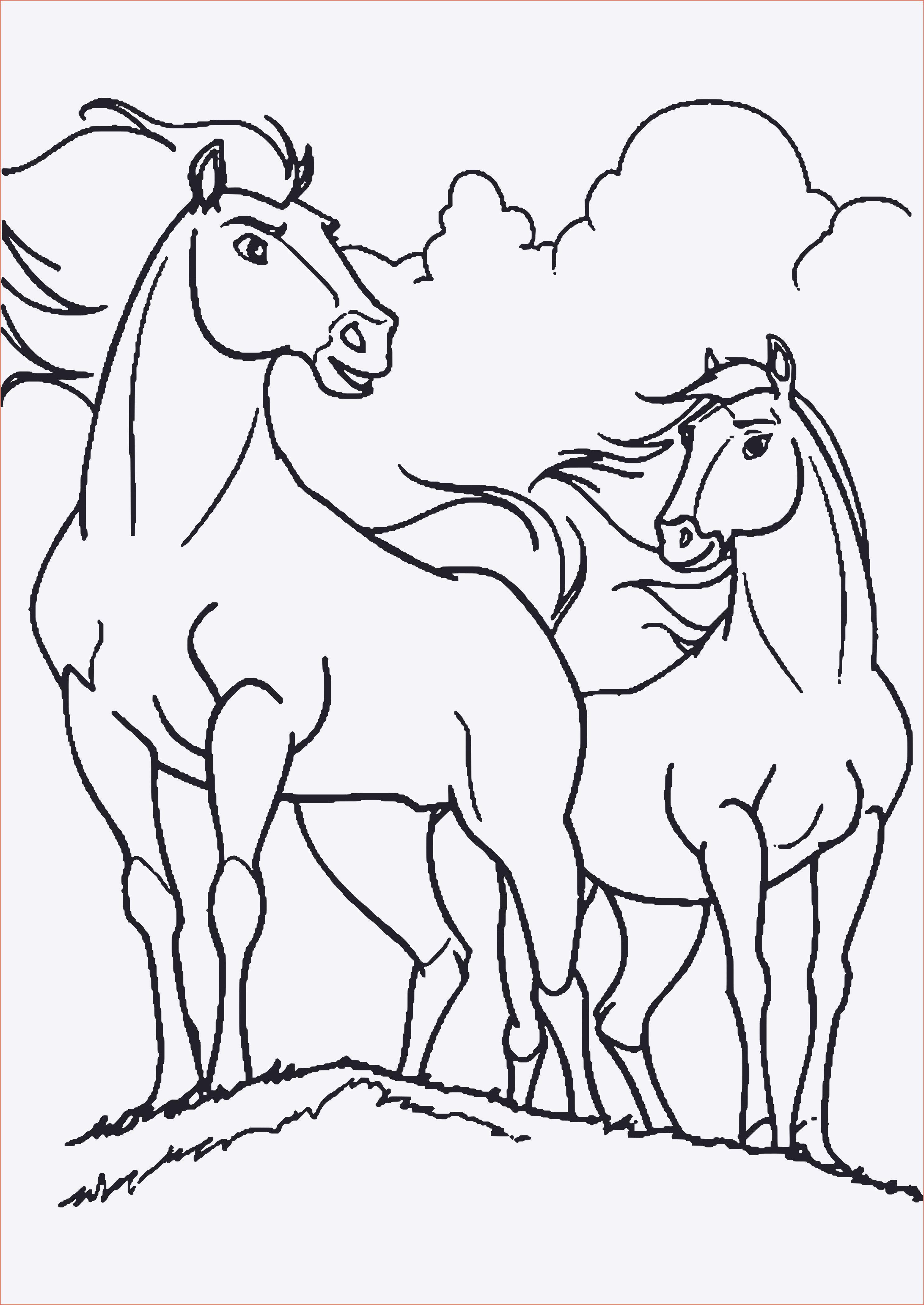 Ausmalbilder Pferde Mit Madchen Neu Ausmalbilder Filly Pferde