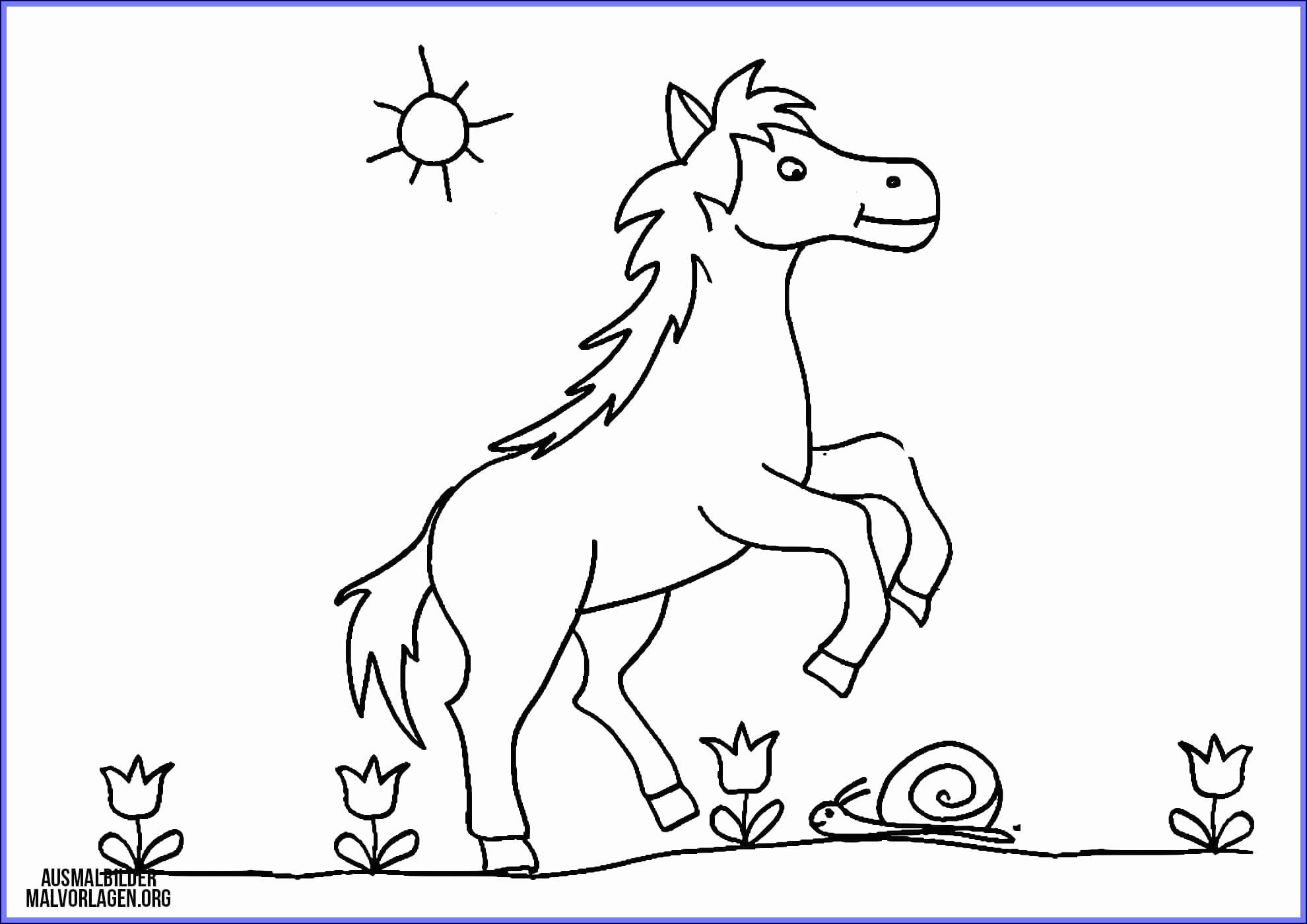 Filly Pferd Ausmalbilder Inspirierend Filly Pferd Ausmalbilder Schön 42 Neu Bild Von Ausmalbilder Von Bild