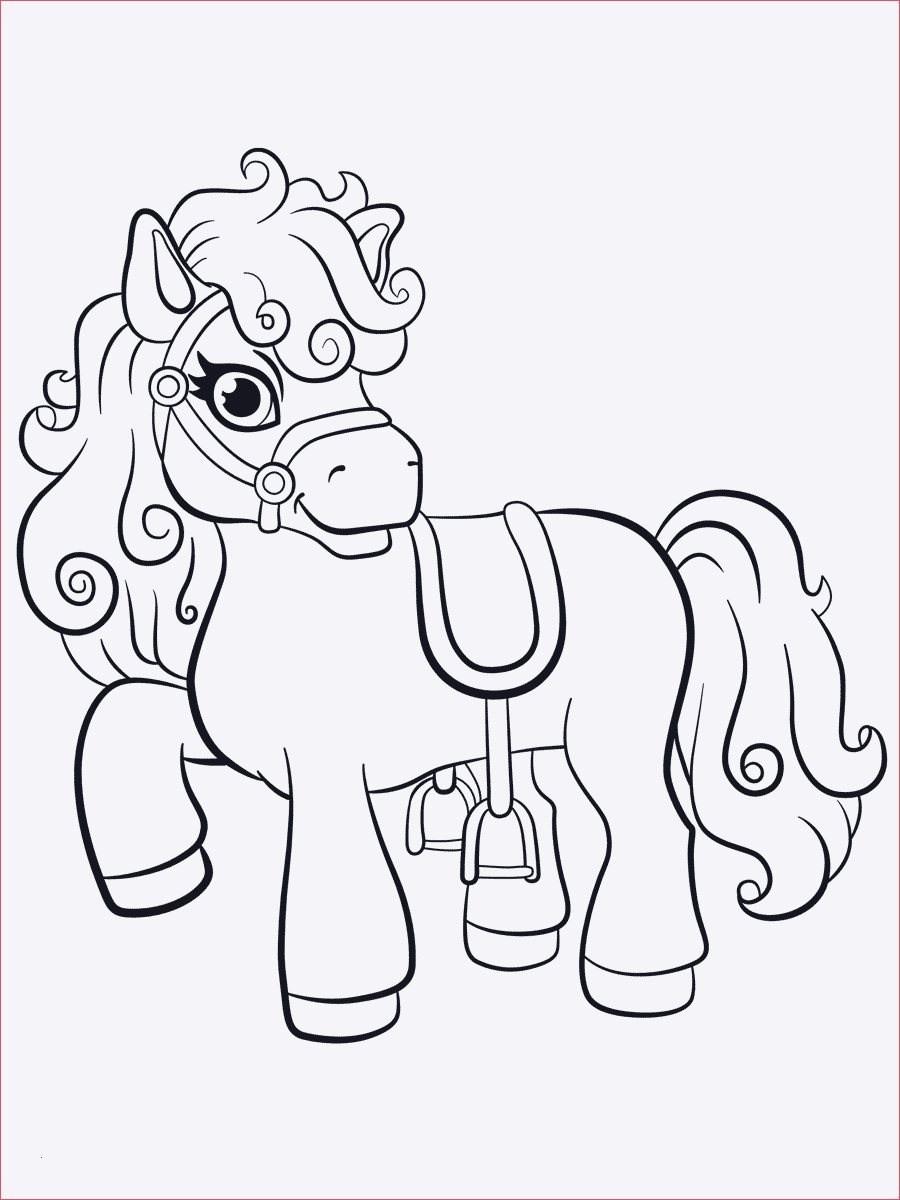 Filly Pferd Ausmalbilder Inspirierend Malvorlagen Filly Pferde Schön Ausmalbilder Pferde Mit Madchen Neu Das Bild