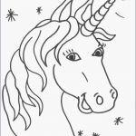 Filly Pferd Ausmalbilder Neu Kostenlose Regenbogen Malvorlagen Außergewöhnliche Filly Pferd Das Bild