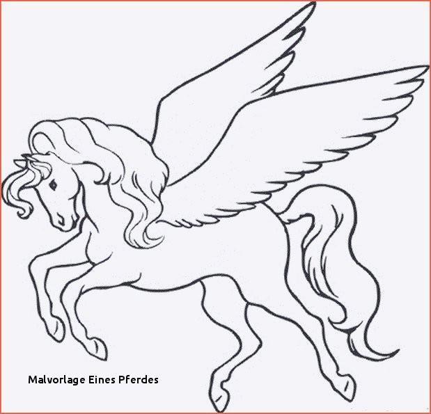 Filly Pferd Ausmalbilder Neu Malvorlage Eines Pferdes Malvorlage A Book Coloring Pages Best sol R Das Bild