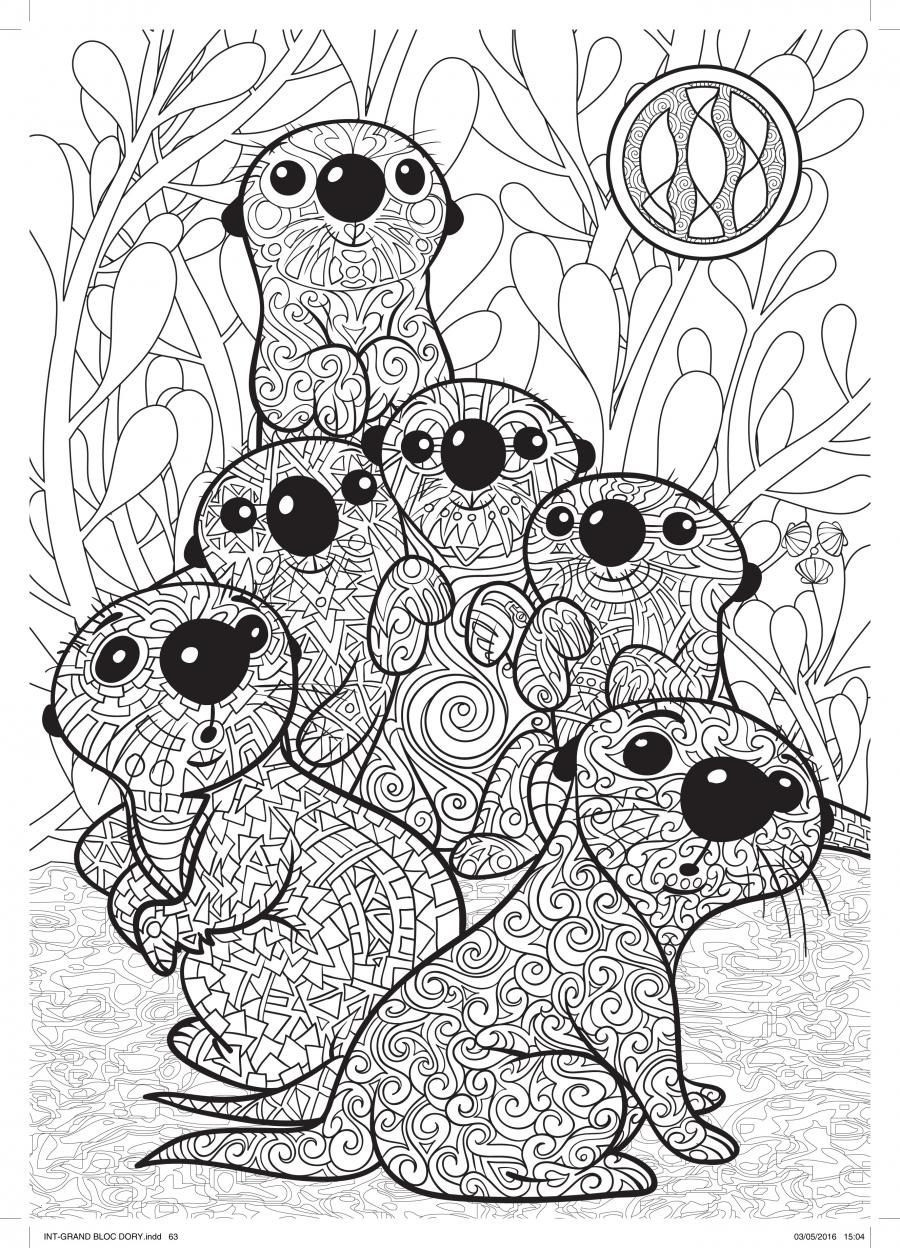 Findet Nemo Ausmalbilder Genial Lovely Finding Dory Coloring Pages Image Inspirierend Findet Nemo Fotos