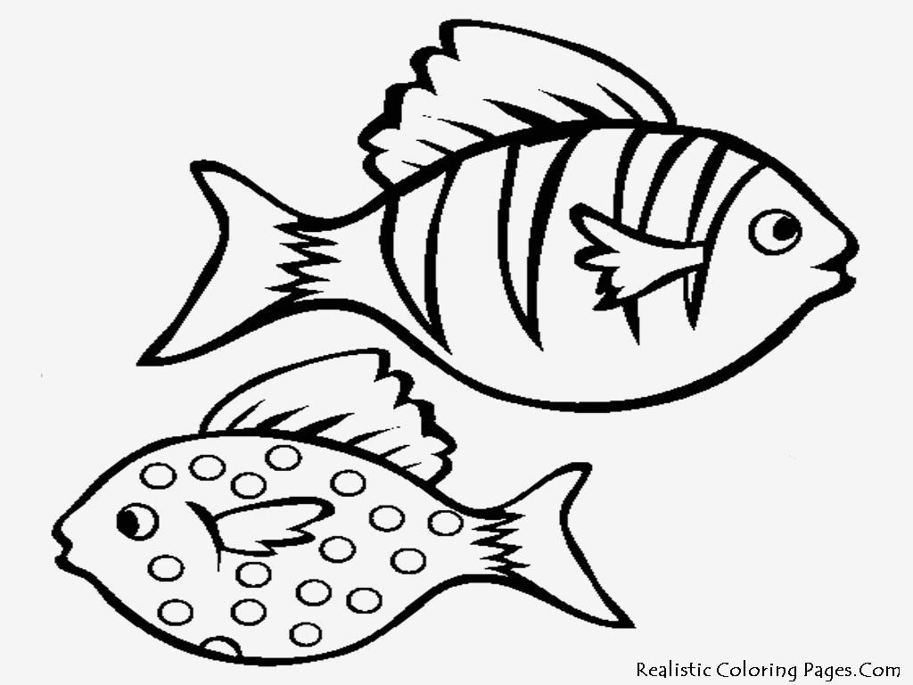 Fisch Zum Ausdrucken Frisch Spannende Coloring Bilder Malvorlagen Fische Kostenlos Bild