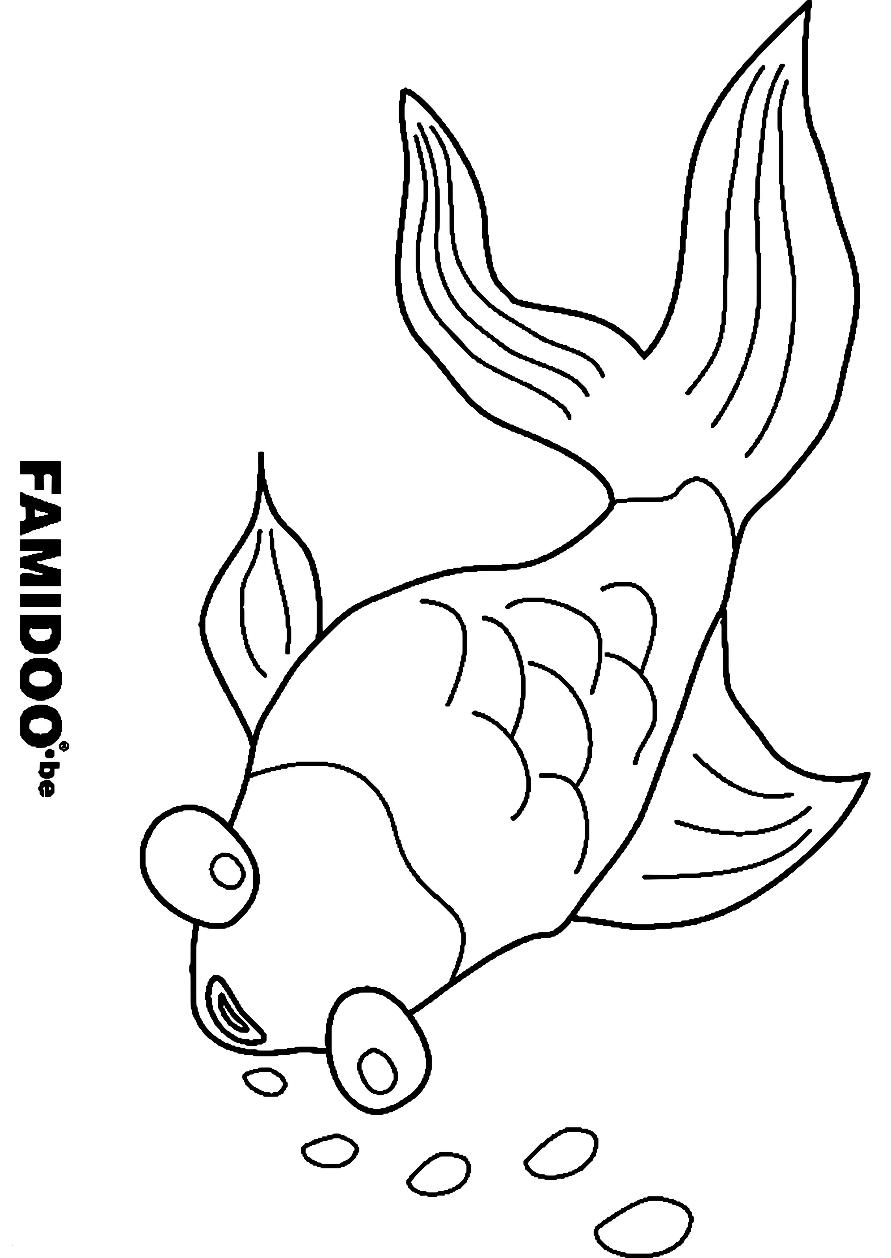 Fische Bilder Zum Ausdrucken Neu Ausmalbilder Weihnachten Schneemann Luxus Igel Grundschule 0d Frisch Sammlung