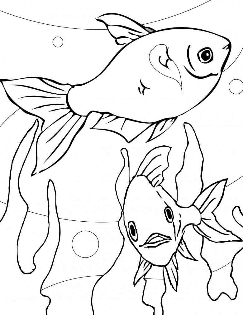 Fische Zum Ausmalen Und Ausdrucken Frisch Ausmalbilder Weihnachten Schneemann Luxus Igel Grundschule 0d Frisch Galerie