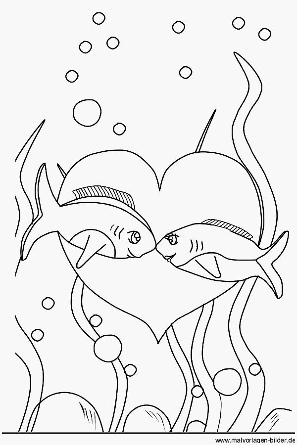 Fische Zum Ausmalen Und Ausdrucken Genial 27 Elegant Fische Schablonen Ausdrucken Design Stock