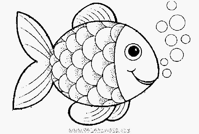 99 inspirierend fische zum ausmalen und ausdrucken fotos