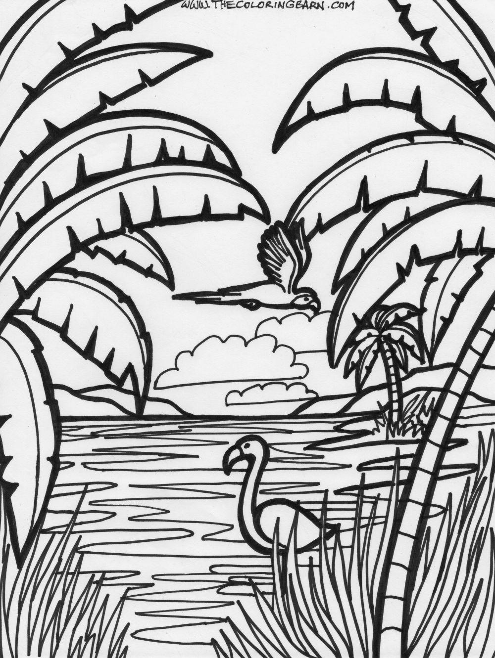 Flamingo Zum Ausmalen Einzigartig Verschiedene Bilder Färben Ausmalbilder sommer Fotos
