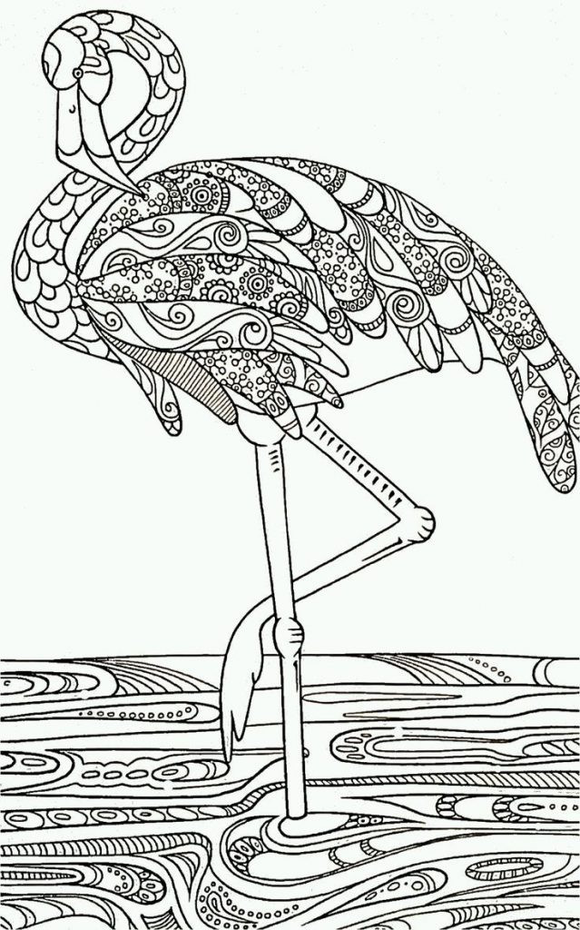 Flamingo Zum Ausmalen Inspirierend Janbleil Flamingos Beak Black and White Drawing Coloring Book Bilder