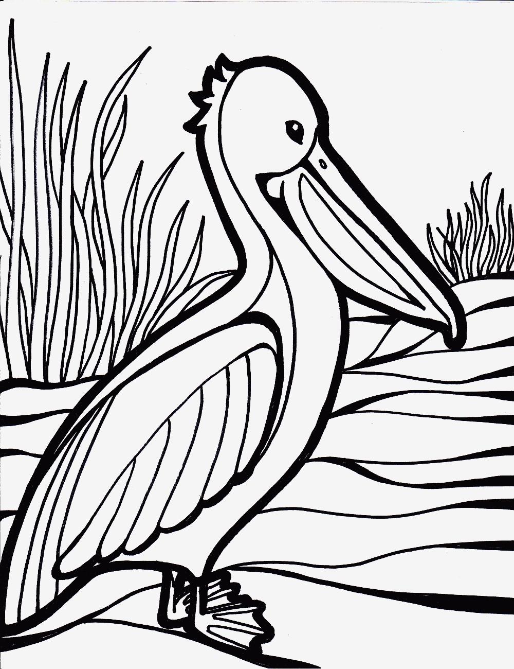 Flamingo Zum Ausmalen Neu Spannende Coloring Bilder Ausmalbild Vogel Bild