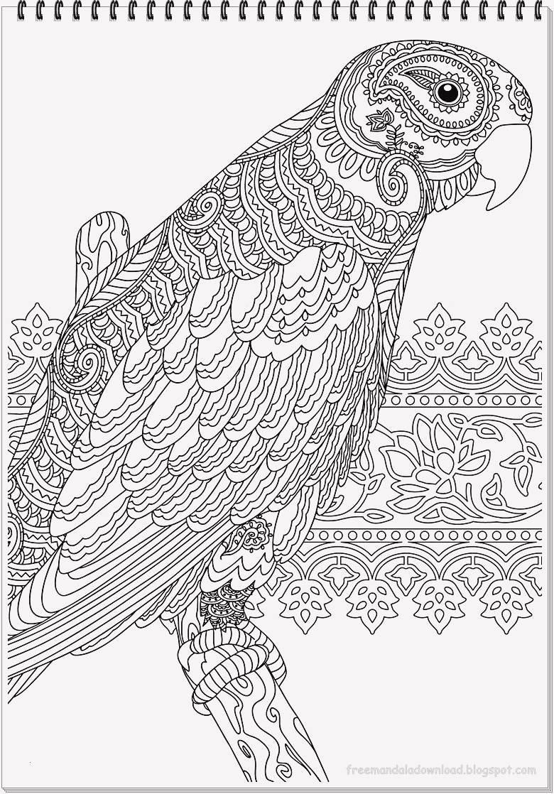 Fliegender Papagei Malvorlage Genial 25 Druckbar Ausmalbilder Fur Erwachsene Papagei Bild