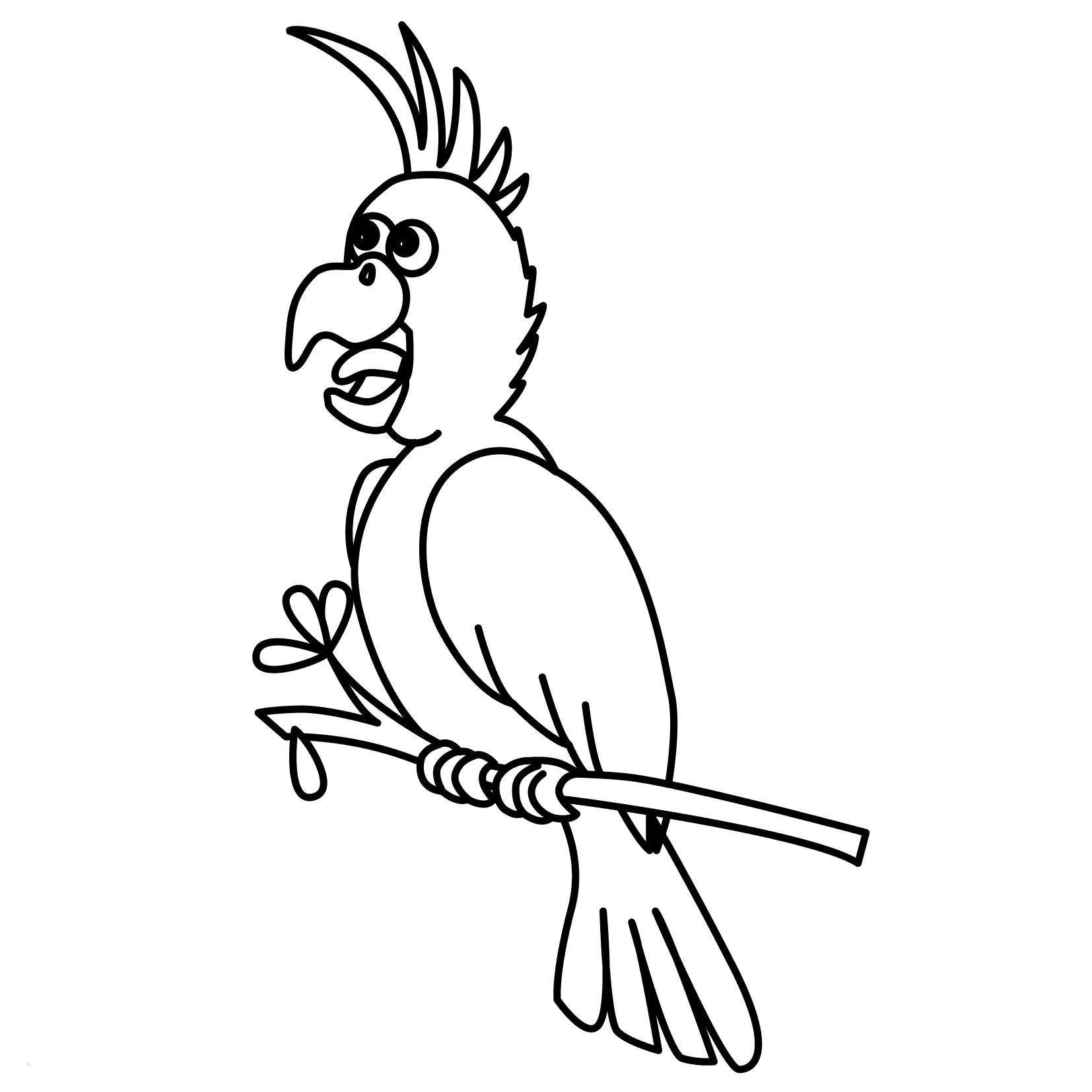 Fliegender Papagei Malvorlage Inspirierend 42 Neu Papagei Ausmalen – Große Coloring Page Sammlung Fotografieren