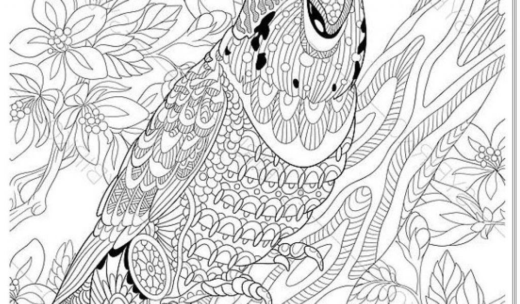 Fliegender Papagei Malvorlage Inspirierend Malvorlage Papagei Papagei Mandala Ausmalbilder Zum Ausdrucken Sammlung