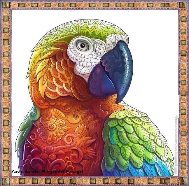 """Fliegender Papagei Malvorlage Neu Ausmalbilder Fliegender Papagei Ausmalbild Papagei"""" Stockfotos Und Bilder"""