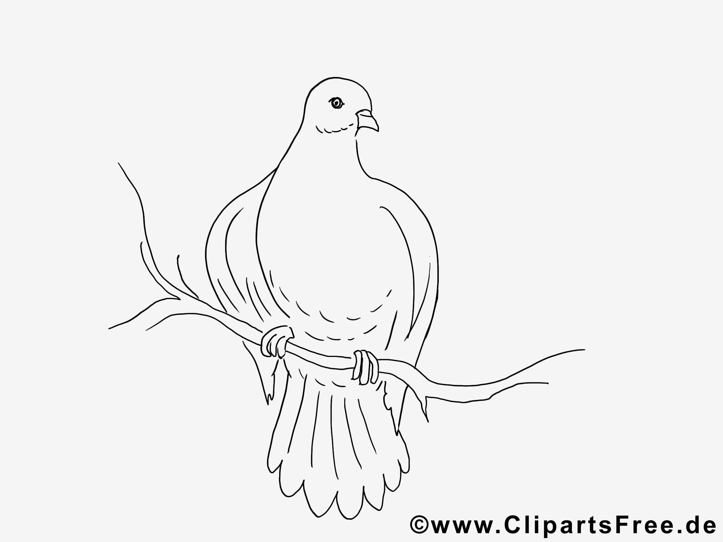 Glubschi Zum Ausmalen Einzigartig Taube Malvorlagen Kostenlos Verschiedene Bilder Färben Glubschi Bild