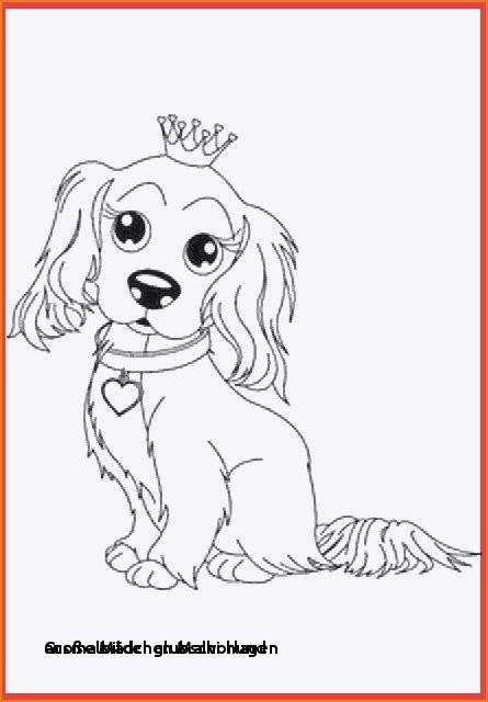 Glubschi Zum Ausmalen Neu 22 Ausmalbilder Glubschi Hund Colorprint Fotografieren