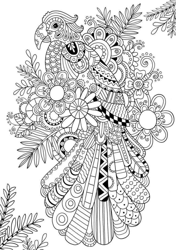 Gruselige Monster Ausmalbilder Frisch Tangeln Sie Einen Papagei Mandalas Pinterest Genial Böse Monster Galerie